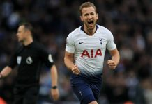 Ibra Sarankan Kane Untuk Tinggalkan Tottenham Hotspur