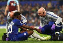 Cedera Paksa Wonderkid Chelsea Akhiri Musim Lebih Awal