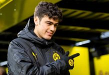 Mengenal Sosok Giovanni Reyna, The New Christian Pulisic